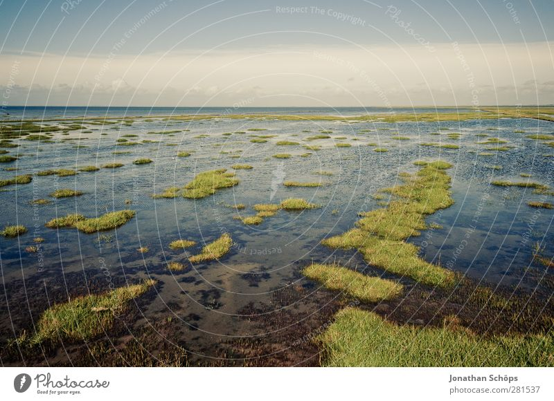 Water & Meadow Environment Nature Landscape Exceptional Infinity North Sea Islands Inundated Deluge Low tide High tide Torrents of water Horizon Gutter mandø