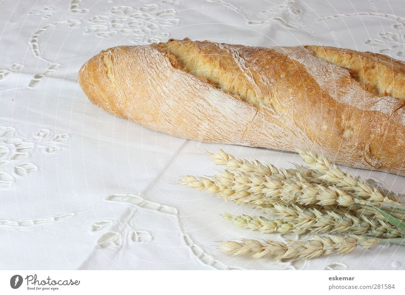White Food Table Grain Breakfast Bread Dinner Baked goods Rural Wheat Tablecloth Dough Ear of corn Rustic Organic Baguette