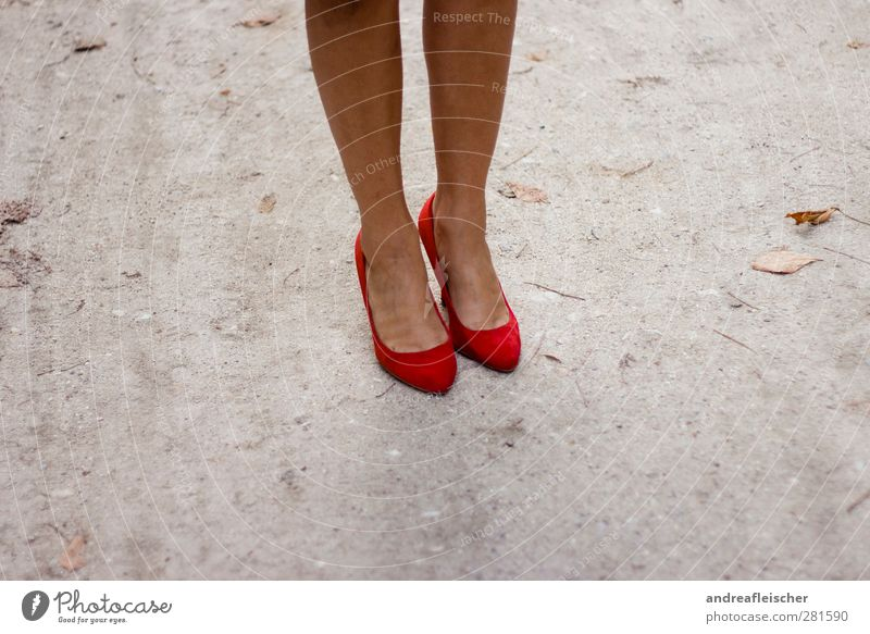 Human being Woman Youth (Young adults) Beautiful Summer Young woman Red 18 - 30 years Adults Autumn Feminine Style Gray Legs Lifestyle Fashion