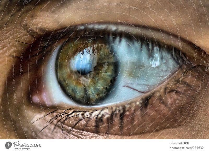 Eyes Emotions Longing Anticipation Optimism