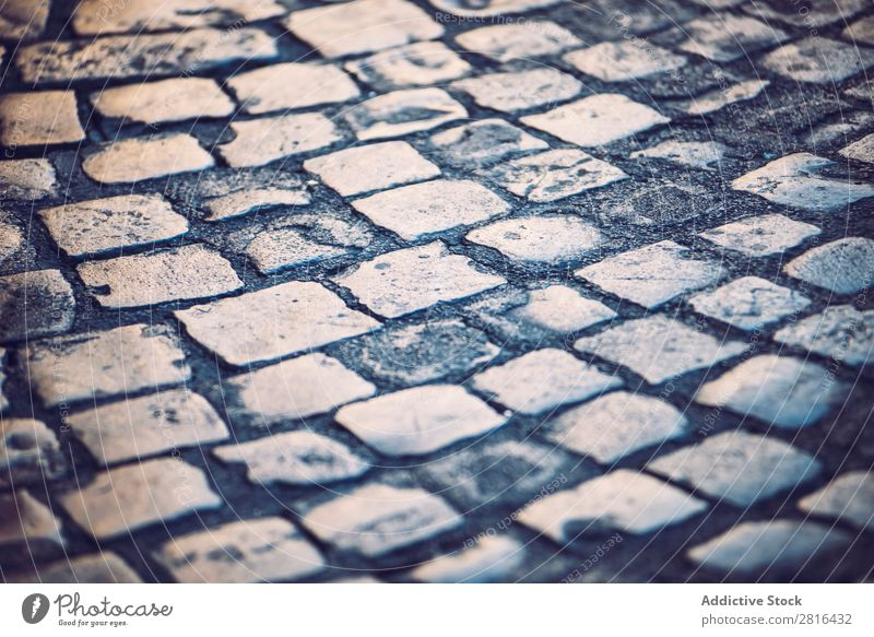 Traditional cobbled street in Rome, Italy Street Close-up Old Vintage Detail European Exterior shot Ancient Italian Destination Vacation & Travel Vantage point