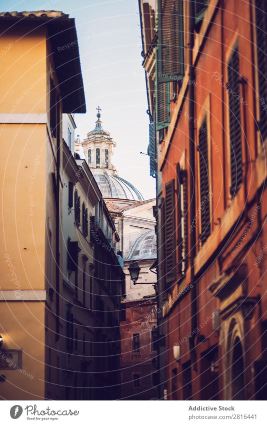Rome, Italy. Typical architectural details of the old city Background picture Old Door Wall (building) Yellow Tree Dirty Green Living or residing Brown Property
