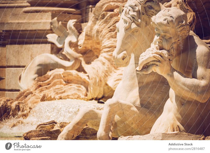 Detail of Fontana di Trevi, Rome, Italy trevi Fountain roma tour Italian Art European Monument fontana bernini Building Shell Classic Stone tritons Sculpture