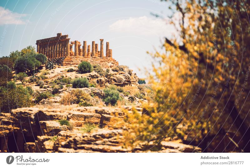 View of the Valley of the Temples in Agrigento, Sicily, Italy Greek sicilia hellenistic Stone Vacation & Travel Sicilian Landmark Column doric touristic God