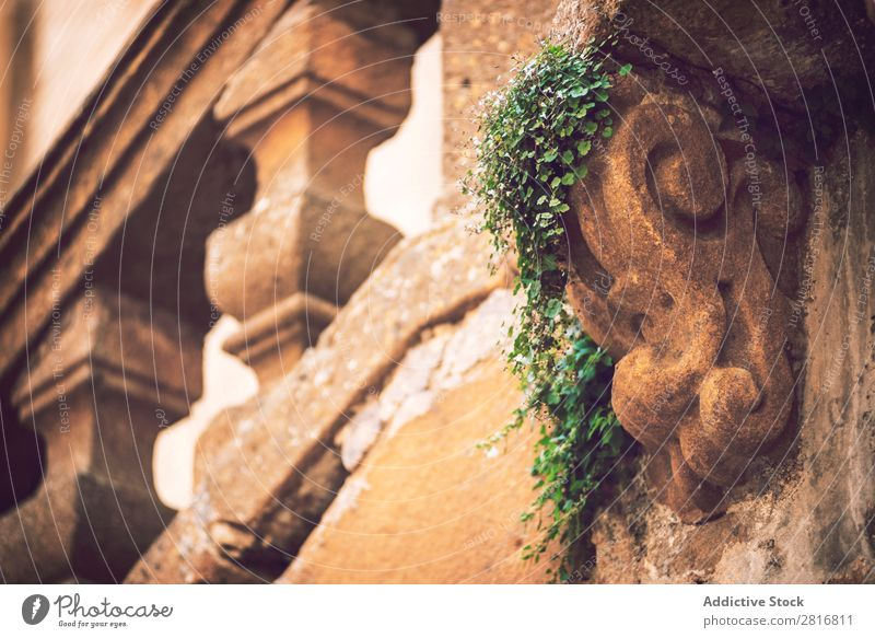 Detail view in Piazza Armerina, Sicily, Italy Places armerina Vacation & Travel Vantage point Old Church Architecture Mediterranean Island Town Building City