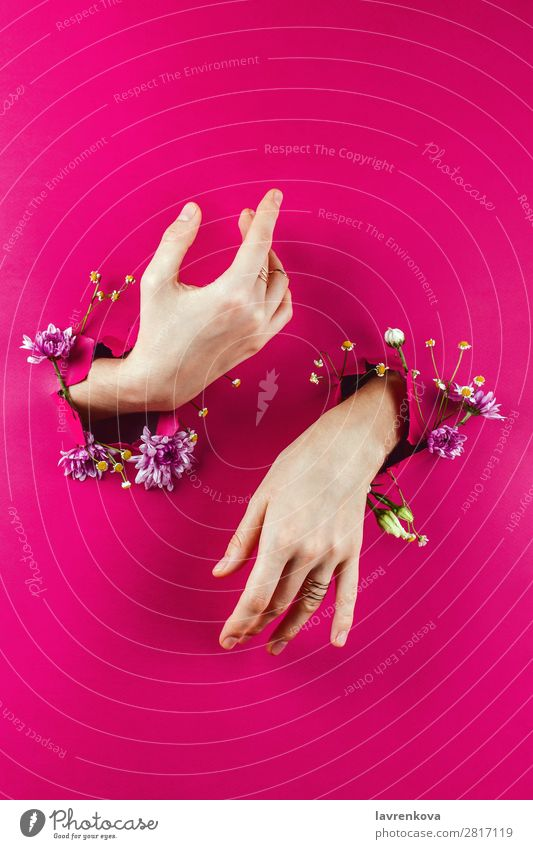 Woman's hands through torn paper filled with flowers Aromatic Beautiful Beauty Photography Flower Bouquet Bracelet Bud Conceptual design Fashion Glamor Paper