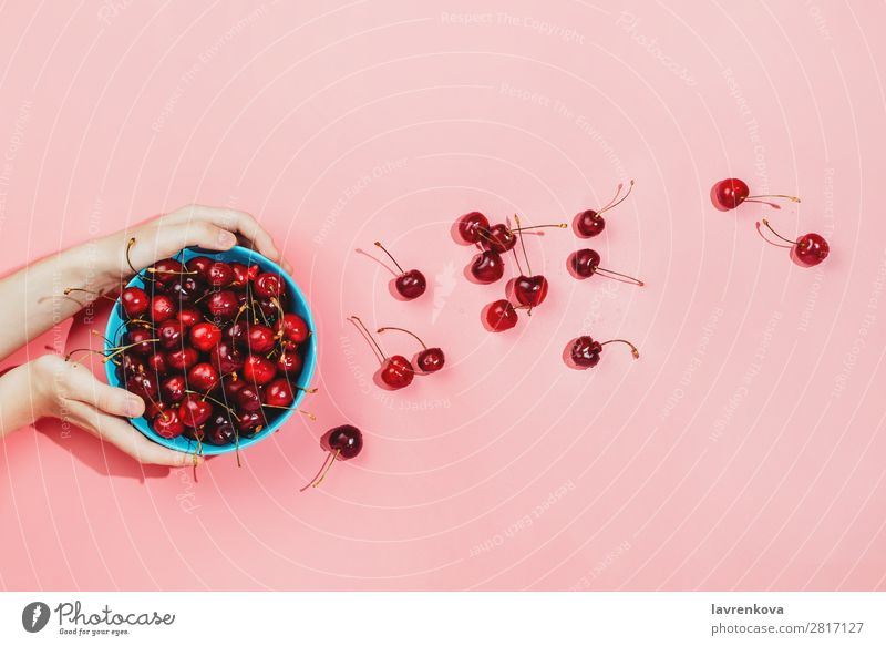 Woman's hands holding blue bowl full of fresh organic cherries Background picture Berries Cherry Colour Conceptual design Delicious Dessert Diet Food