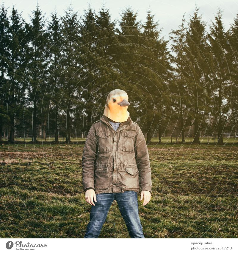 Like a bird. Human being Masculine Young man Youth (Young adults) 1 30 - 45 years Adults Environment Nature Landscape Spring Grass Garden Park Field Forest