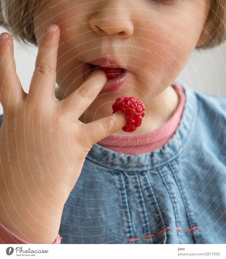 tidbit Food Fruit Candy Eating Finger food Healthy Eating Contentment Summer Child Girl Infancy Hand 1 Human being 3 - 8 years To enjoy Brash Fresh Delicious