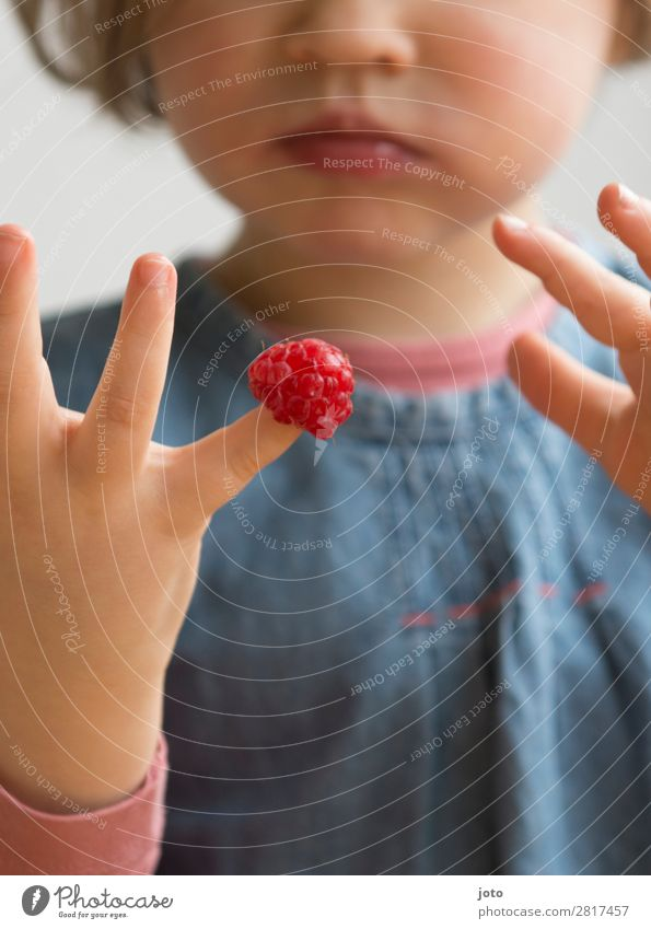 last Food Fruit Candy Eating Finger food Healthy Eating Contentment Summer Study Infancy Hand 1 Human being To enjoy Fresh Delicious Cute Sweet Red