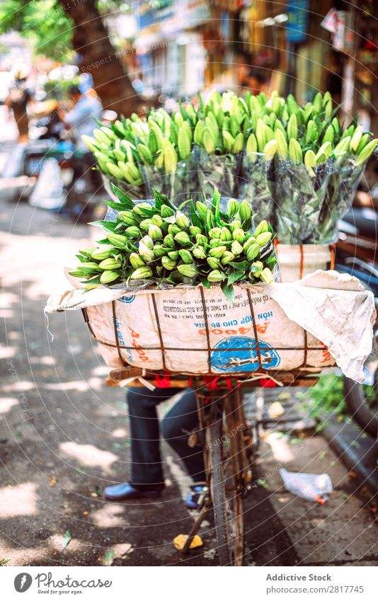 Hanoi, Vietnam - May 2, 2015: Vietnamese street market lady sell Asia asian Balance Basket Bicycle Business Carrying Category City Commerce Culture Delivery