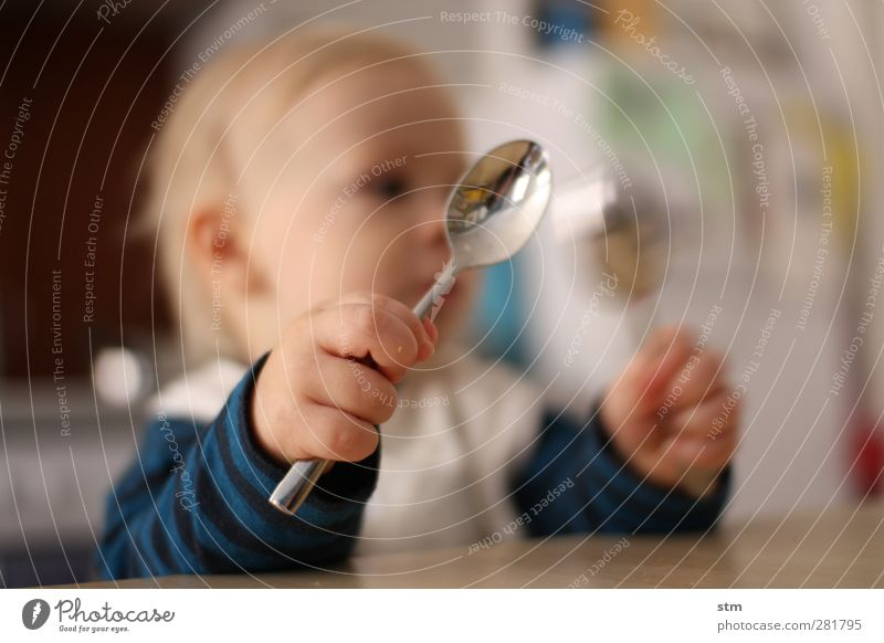 HUNGER ! Nutrition Eating Cutlery Spoon Living or residing Flat (apartment) Child Baby Toddler Infancy Skin Hand Fingers Fist 1 Human being 1 - 3 years Observe