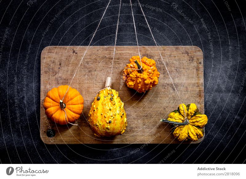 Pumpkins on dark table Food Background picture Diet Fresh Green Healthy Natural Organic Raw Agriculture Mature Table Bird's-eye view Vegetable Vegetarian diet