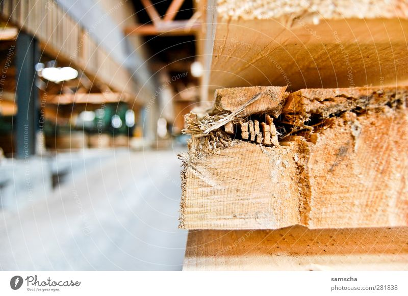 sawmill Craftsperson Agriculture Forestry Craft (trade) Construction site Wood Work and employment Build Natural Wooden board Joiner Joiners workshop Saw mill