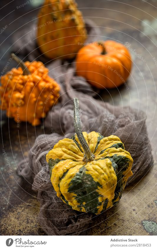 Halloween decoration background Hallowe'en Background picture Autumn Pumpkin Spider Decoration Fear Wood Dark Object photography Night Veal Orange Costume