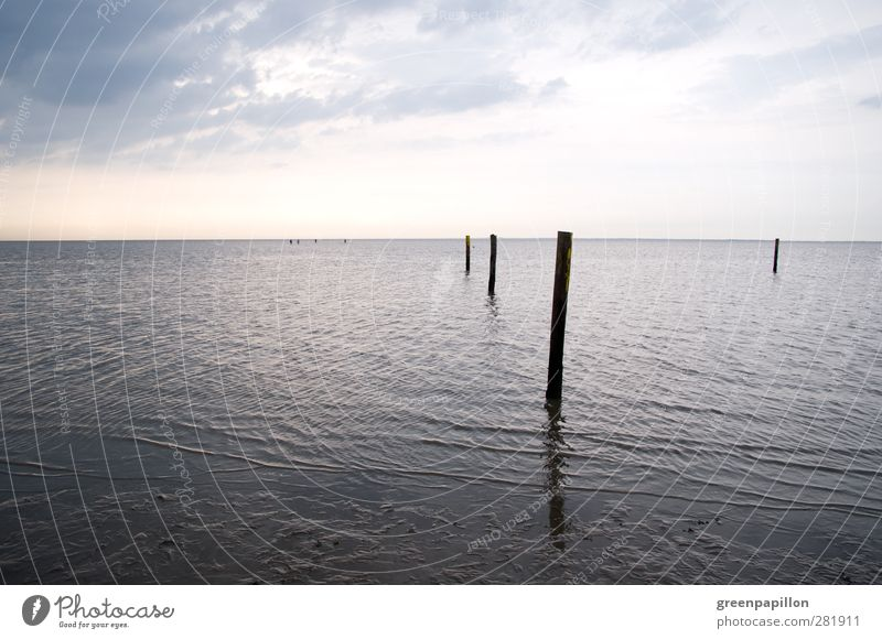 Wadden Sea in typical North Sea weather - grey in grey - low tide Calm Cure Fishing (Angle) Vacation & Travel Swimming & Bathing Hiking Group Environment Nature