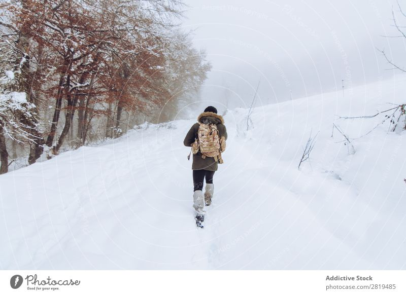 Tourist with backpack in snowy forest Nature Forest Winter Snow traveller Backpack Walking Street Cold Landscape White Frost Tree Seasons Scene Beautiful