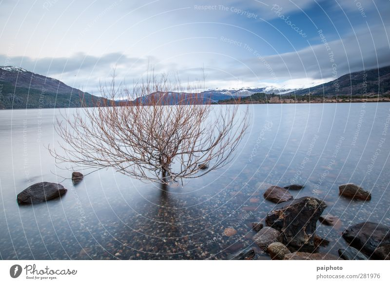 lake calm 02 Sky Water Tree Clouds Calm Landscape Mountain Lake Rock Bushes Peace Dusk Peaceful Patagonia Patagonia