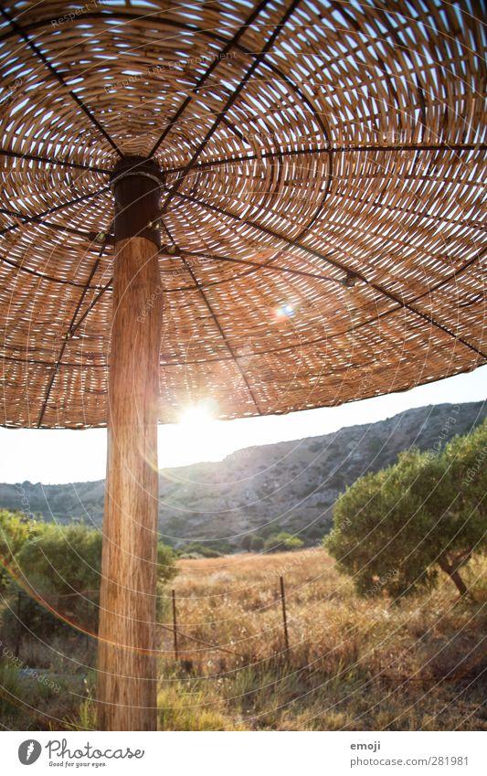 Nature Vacation & Travel Summer Sun Landscape Environment Warmth Bright Beautiful weather Hot Sunshade