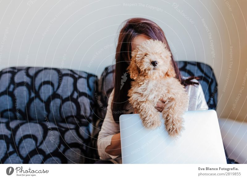Cute toy poodle with his young owner at home Lifestyle Joy Happy Beautiful House (Residential Structure) Sofa Cellphone PDA Computer Notebook Technology