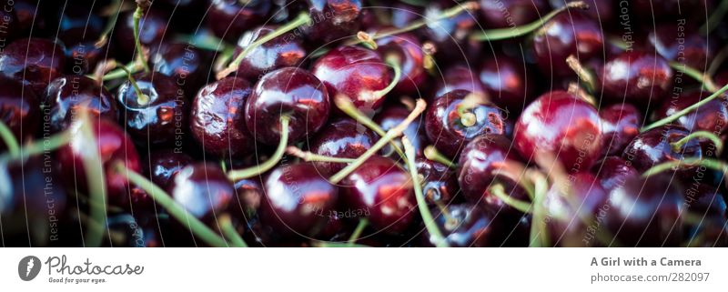 Cherries Food Fruit Cherry Nutrition Organic produce Vegetarian diet Diet Fresh Healthy Round Small Juicy Markets Offer Beautiful Colour photo Multicoloured