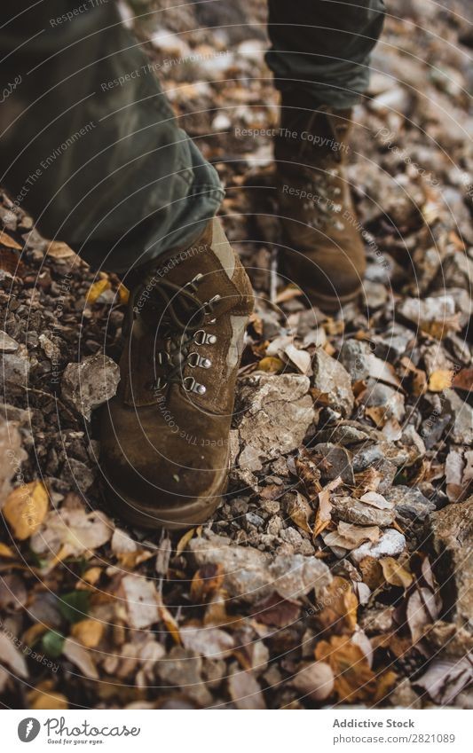 Legs of hiker in forest Leaf Pebble Footwear Human being Forest Hiking Nature Autumn Vantage point Vacation & Travel Adventure Walking Environment Lifestyle