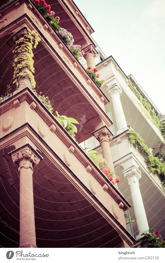 my street Berlin Germany Europe Capital city House (Residential Structure) Architecture Column Balcony Balcony plant Stone Old Green Pink White Old building
