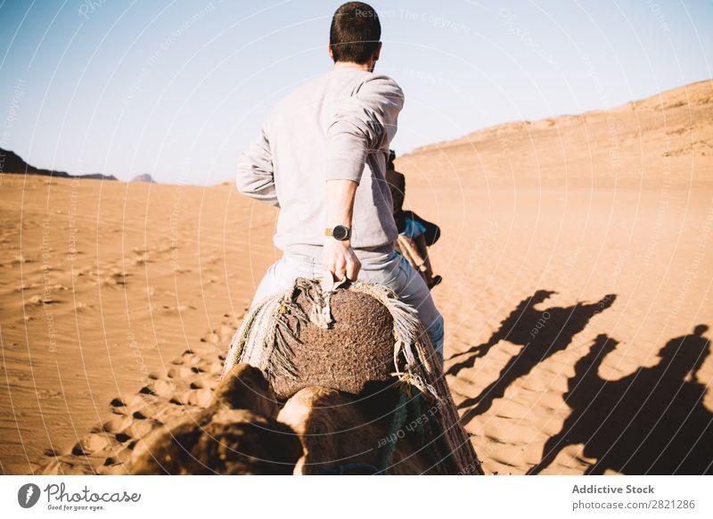 Man riding camel in desert Desert Camel Tourist Vacation & Travel Tourism Nature Hot Adventure Caravan Trip Sand Animal arabic Heat Walking Dune traveler