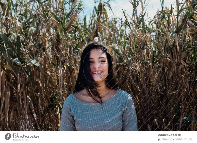 Young woman in dry grass Woman pretty Youth (Young adults) Beautiful Brunette Grass Nature Dry Looking into the camera Attractive Human being Beauty Photography