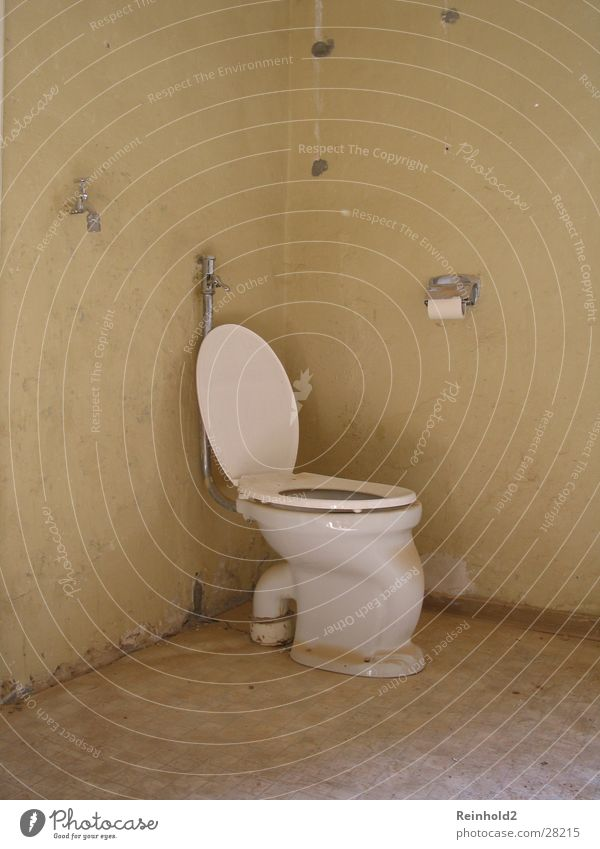 old building Still Life Paper Coil Photographic technology Toilet Old Gotta go