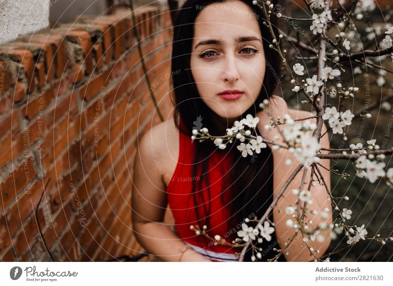 Young brunette in spring flowers Youth (Young adults) Woman pretty To enjoy Flower Tree Soft Small White Blooming Blossoming Branch Beautiful