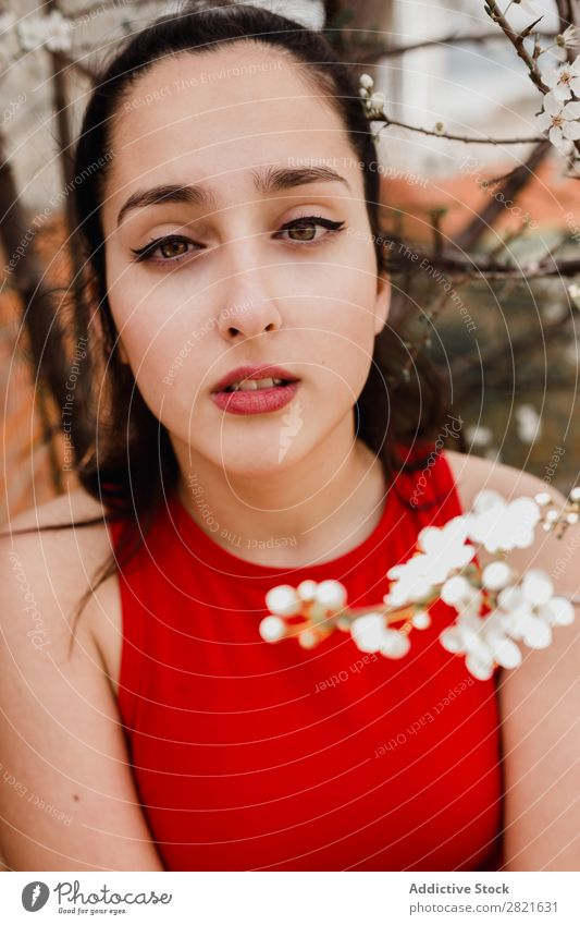 Pretty woman with soft flowers Youth (Young adults) Woman pretty To enjoy Flower Tree Soft Small White Blooming Blossoming Branch Beautiful Portrait photograph