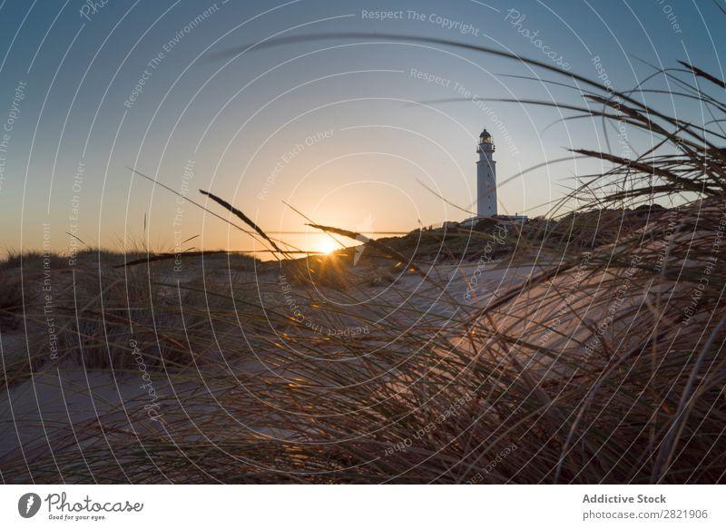 Beacon in sunset lights Lighthouse Sunset Ocean Landmark Navigation Landscape Tower Nautical Coast Grass Dry Balance beam Clouds Beach Dusk marine Evening
