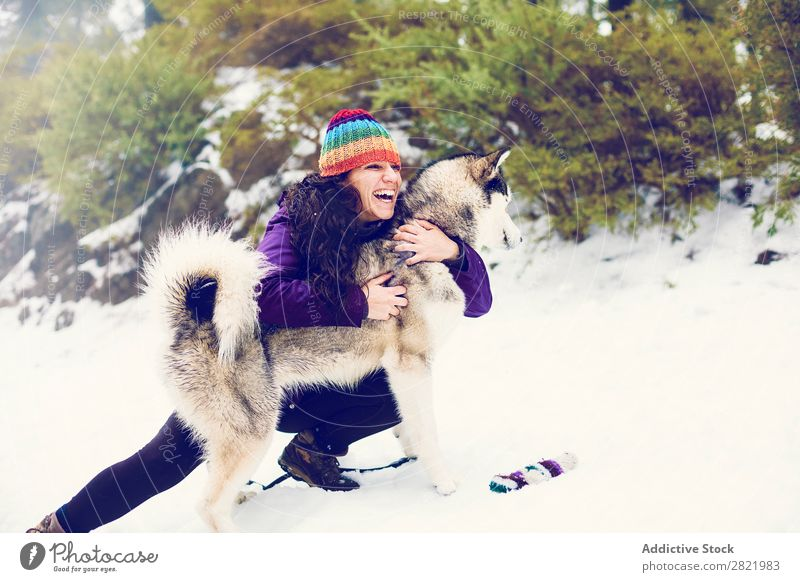 Laughing woman playing with dog in snows Woman Dog Boxing Snow having fun Together Pet Mammal White Nature Cheerful Joy Contentment Laughter struggle Bite Husky