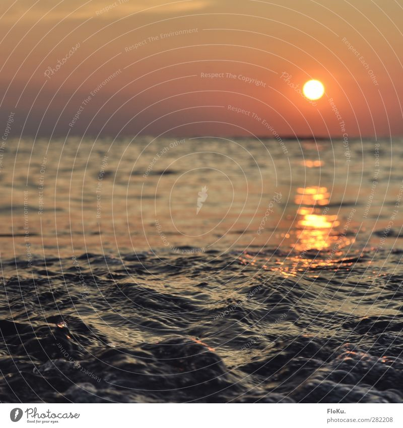 North Sea in the evening Vacation & Travel Tourism Far-off places Freedom Summer Sun Ocean Environment Nature Elements Water Sky Horizon Beautiful weather Blue