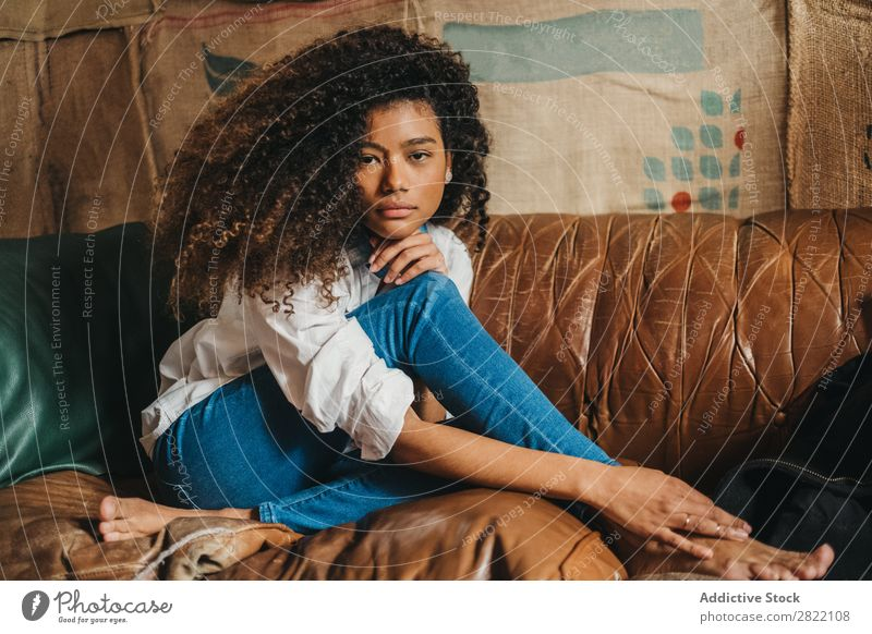 Stylish ethnic woman on couch Woman pretty Beautiful Ethnic Black Curly Youth (Young adults) Leather Couch Sofa Brown Sit Looking into the camera Brunette