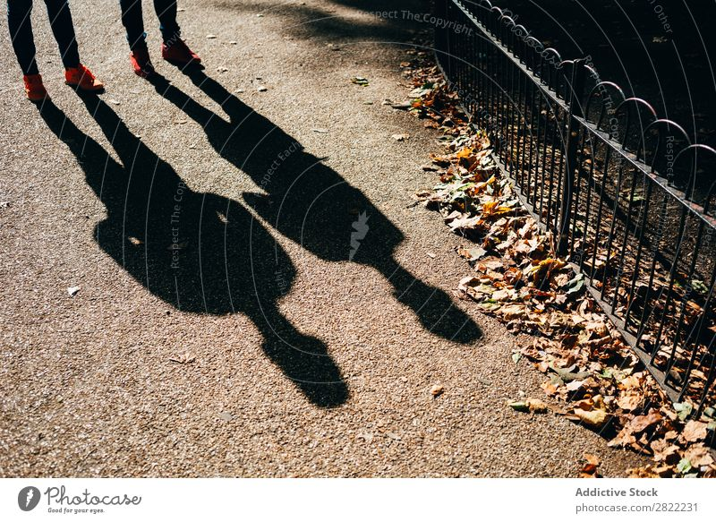 Shadows on sunny sidewalk Pavement Sunlight London England Silhouette Town Street City travelers Ground Pedestrian Walking Life Promenade Sidewalk Autumnal Leaf