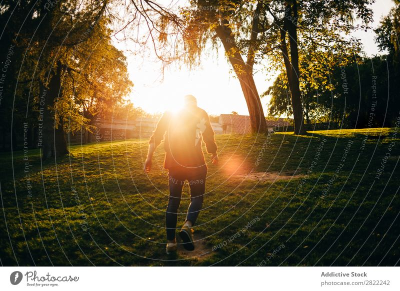Young man in sunny park Man Youth (Young adults) Lawn Park Grass Summer Happy Lifestyle Green Nature Leisure and hobbies Cheerful Tree Sunbeam Smiling Joy