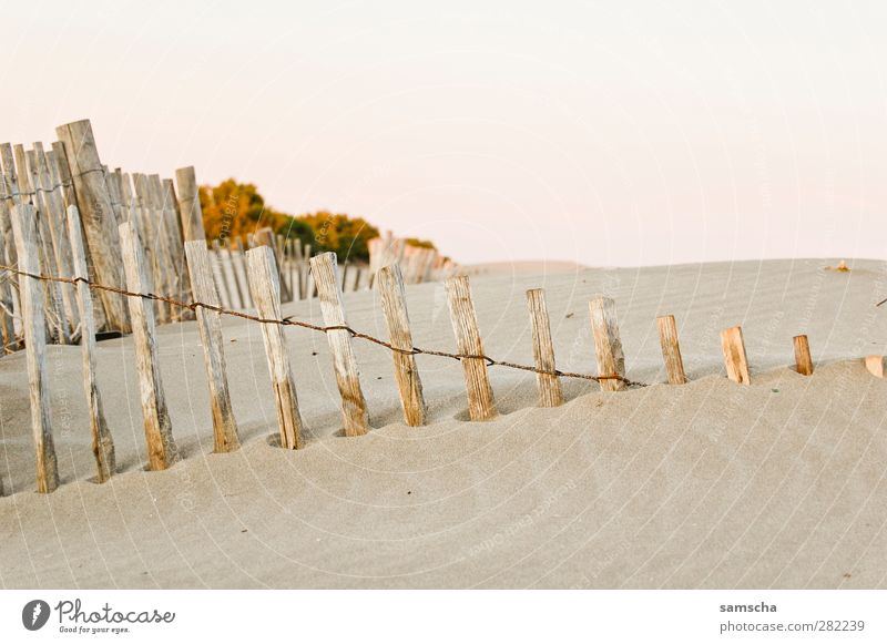 sandy Nature Sand Coast Beach Desert Diet Idyll Sandy beach Sandbank Sanddrift Beach dune Haag Fence Wooden board Wooden stake Wooden fence lattice fence