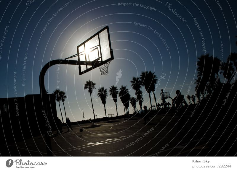 Sunset Beach Basketball Elegant Exotic Athletic Adventure Summer vacation Sports Fitness Sports Training Ball sports Sunrise Sunlight Park Los Angeles