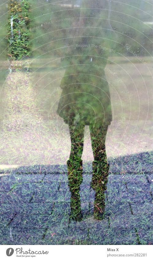 Boots in the morning Human being Feminine 1 Cold Dew Condensation Skirt Legs Street Window Reflection Pane Colour photo Exterior shot Full-length