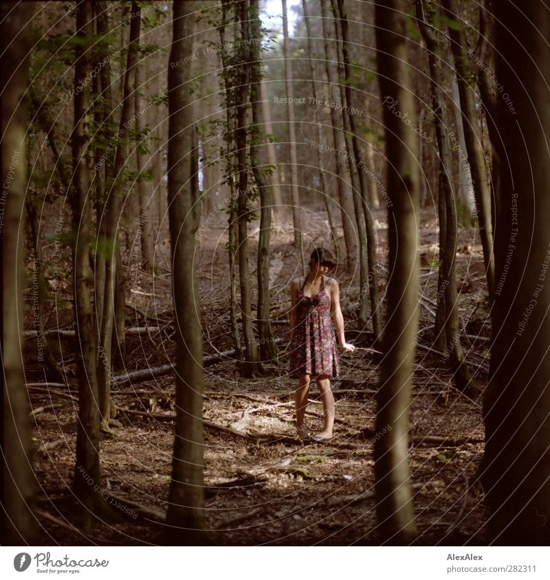 ... and then you don't know left or right, back or forth. Young woman Youth (Young adults) Body Legs 18 - 30 years Adults Nature Earth Tree Undergrowth Forest