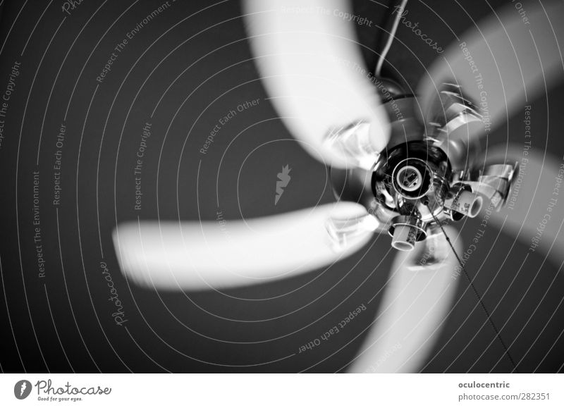 whirlwind Fan Rotate Glittering Athletic Speed Dynamics Blow Wind Chrome Ceiling Black & white photo Interior shot Experimental Deserted Copy Space left