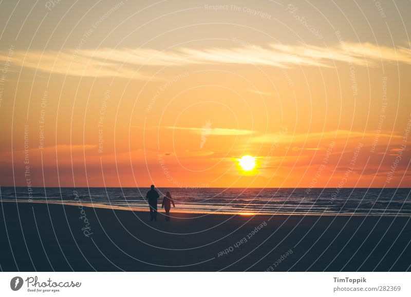 Langeoog Love Sun Sunrise Sunset Beautiful Lovers Romance Beach Walk on the beach Sunlight East frisian island Horizon Sky Couple Dusk Evening Exterior shot