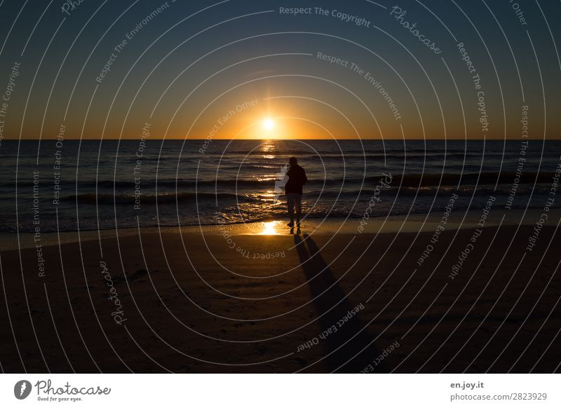 during Vacation & Travel Tourism Trip Far-off places Summer Summer vacation Sun Beach Ocean Man Adults 1 Human being Landscape Cloudless sky Horizon Sunrise