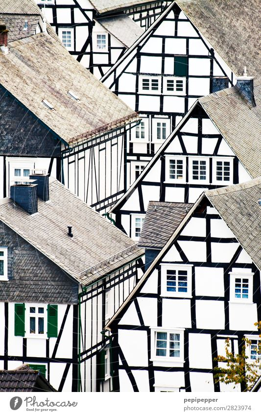 Freudenberg Living or residing Flat (apartment) House (Residential Structure) North Rhine-Westphalia Village Detached house Manmade structures Building