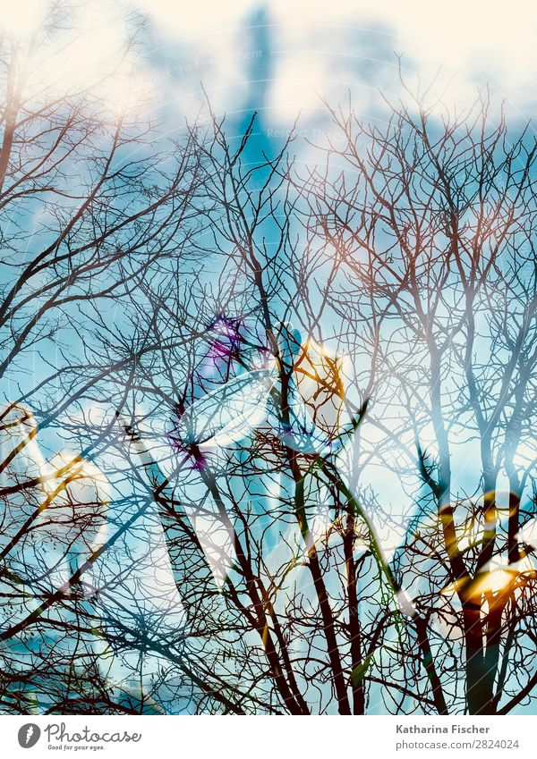 tree branches flowers double exposure Art Work of art Painting and drawing (object) Nature Spring Autumn Winter Plant Tree Flower Leaf Blossom Blossoming Blue