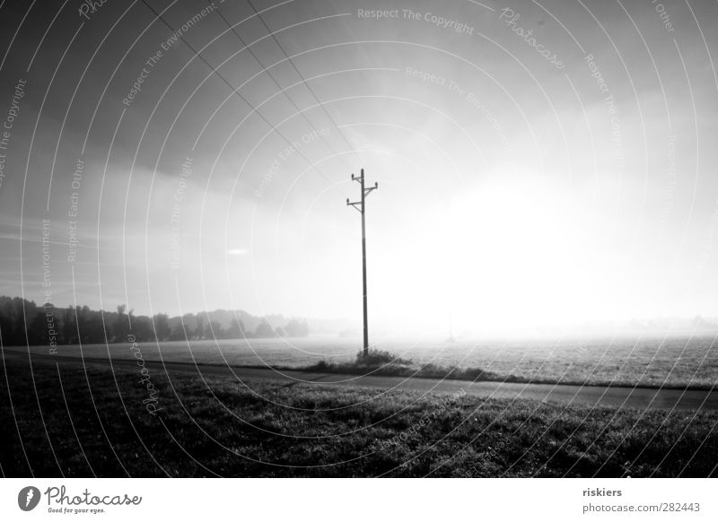 disappear in the nothingness Environment Nature Landscape Sun Autumn Fog Meadow Field Bright Emotions Moody Electricity pylon High voltage power line