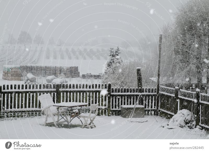 Nature White Landscape Winter Environment Snow Garden Snowfall Field Table Living or residing Chair Vantage point Seating Plantation Garden fence