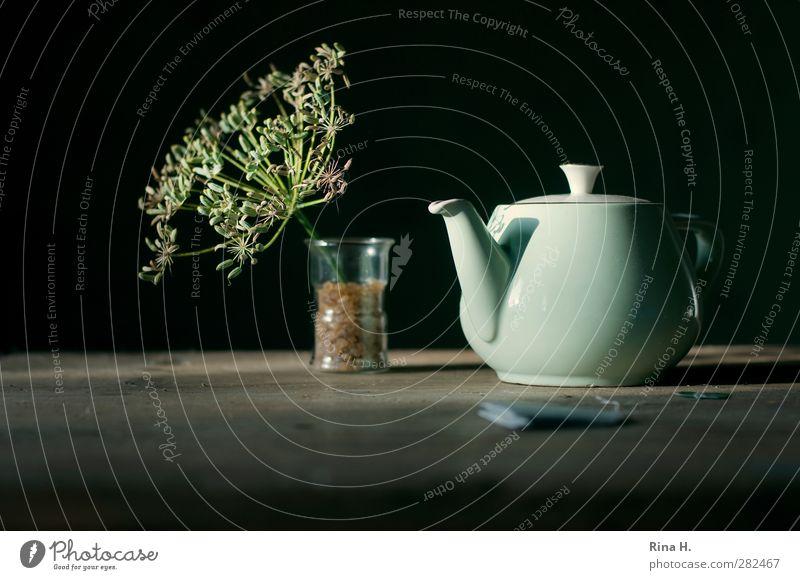 Healthy Glass Tea Seed Alternative medicine Teapot Hot drink Teabag Herb tea Fennel Sugar candy